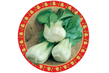 Bok Choi_Green Fortune_web
