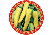 Capsicum_Yellow Banana_web